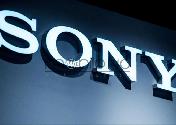 سونی با پرداخت 250 میلیون دلار , صاحب بخشی از اپیک گیمز می شود