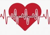 شیائومی قابلیت جدید پایش ضربان قلب به گوشی های خود اضافه می کند