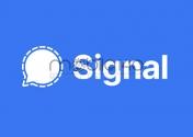 محبوبیت signal و پسرفت واتساپ