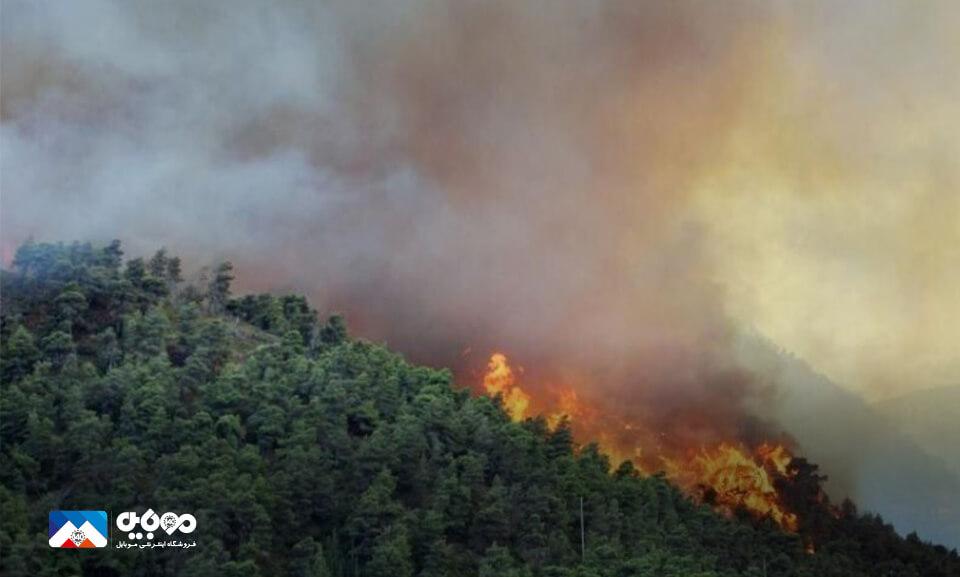 هشدار سریع آتشسوزی در جنگل